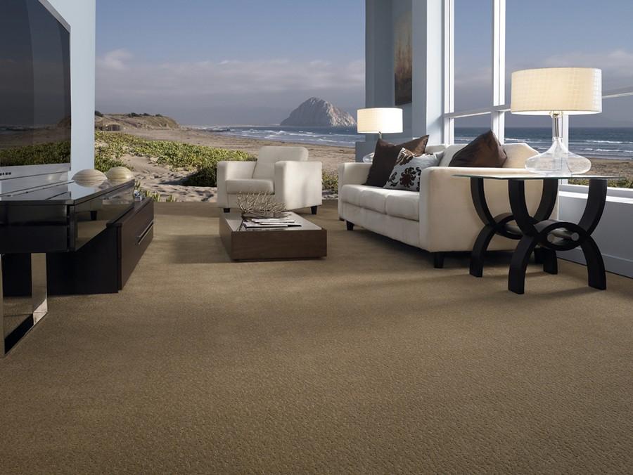 Carpet Floors By Ray